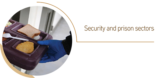 Security and prison sectors